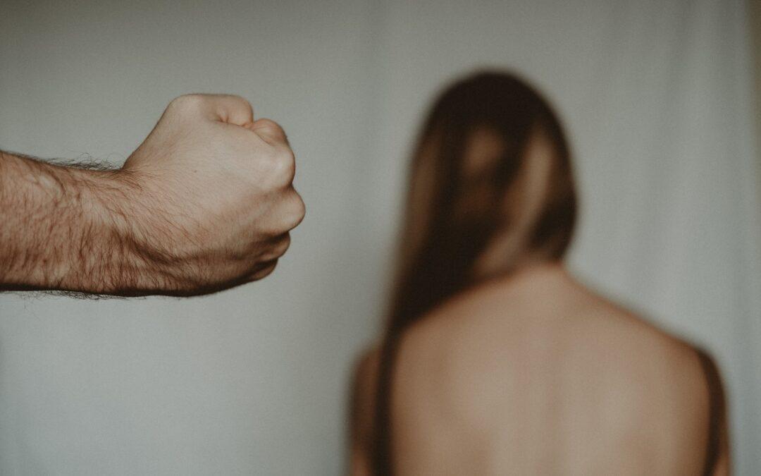 Predstavljeni rezultati eks-post analize Pokrajinskog programa za zaštitu žena od nasilja